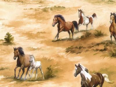 horses wallpaper. Wild Horse Wallpaper