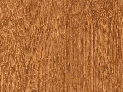 Woods : wallpapers and borders to buy online, wallpaperandborders.co.uk