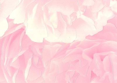 Home :: RASCH :: Quality :: Pink Roses   818413   Vinyl Wallpaper